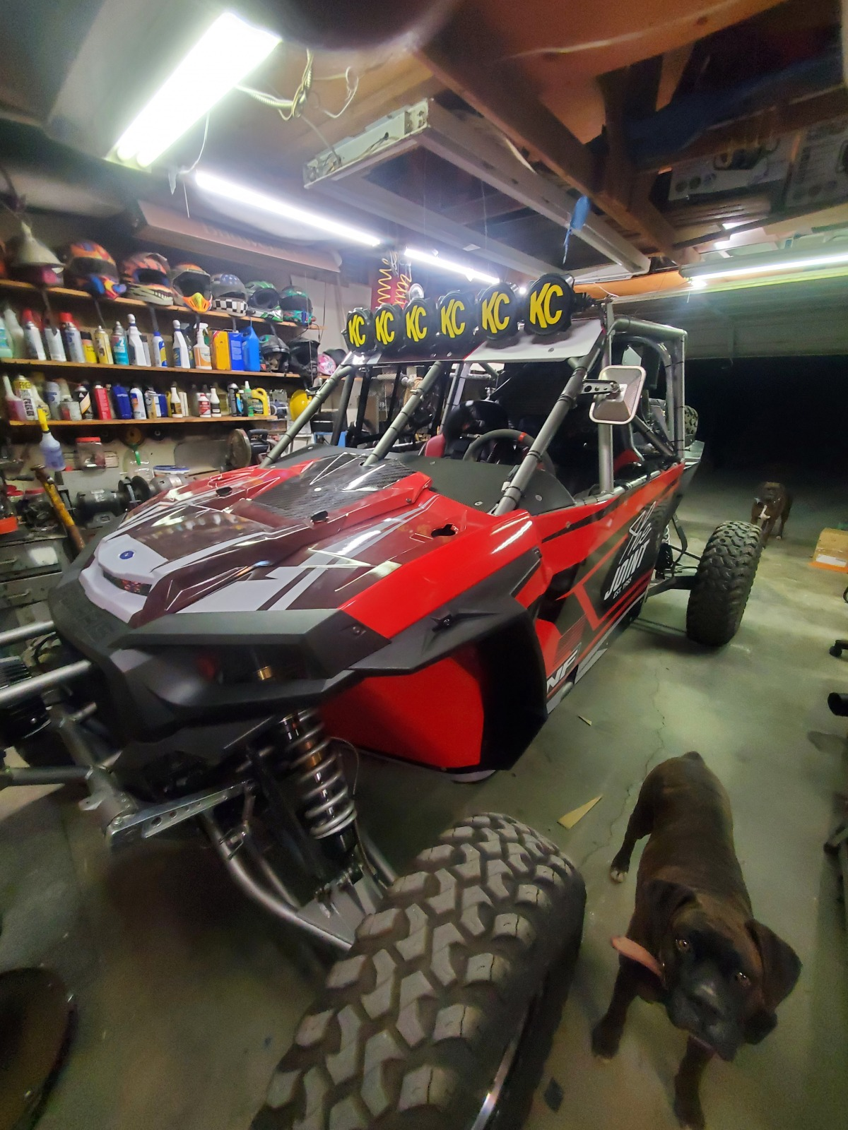 For Sale: BITD Race RZR Health issue causing sale.  $47K - photo7